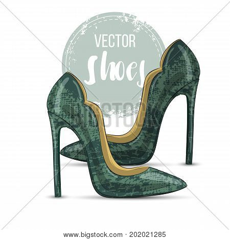 Vector color womens reptile leather stiletto pumps. Front view