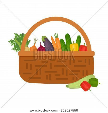 Wicker basket full of vegetables isolated on a white background. There are carrots, cucumbers, sweet peppers, onions, eggplant, zucchini and other vegetables in the picture. Vector illustration.