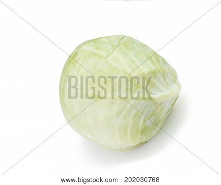 The raw Cabbage isolated on white background