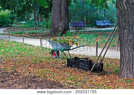 Wheelbarrow full of flowers gardening tools and boxes in the park