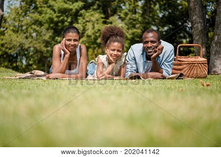 African American Family Having Picnic