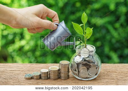 Stack of coins and growth sprout plant with hand watering as business finance or grow investment concept.