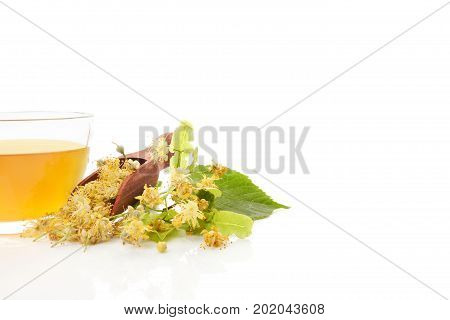 Linden tea with linden flowers in spoon. Isolated on white background.