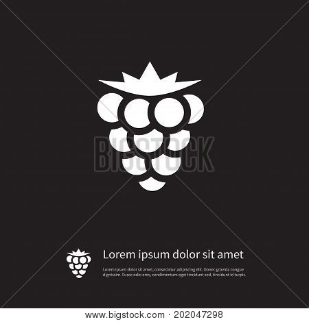 Bramble Vector Element Can Be Used For Bramble, Blackberry, Dewberry Design Concept.  Isolated Blackberry Icon.