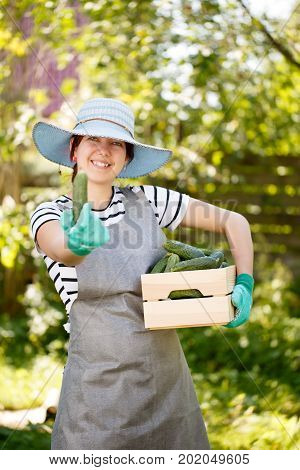 Photo of brunette agronomist in hat with box of cucumbers on shoulder in garden