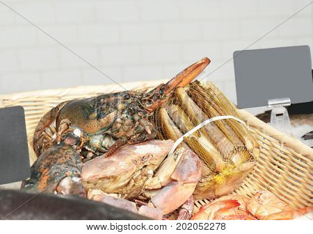Assortment of seafood in supermarket