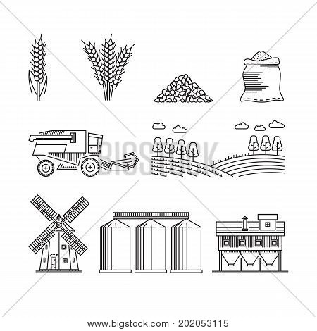 The set of elements of agriculture for growing cereals, wheat, rye. Vector icons on the theme of farming and growing grain for flour production isolated on white background.