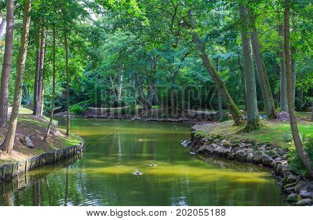 Palanga Botanical Park pond in summer midday with water in foreground, Palanga, Lithuania, Europe