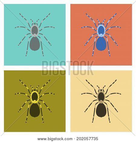 assembly of flat Illustrations nature spider tarantula