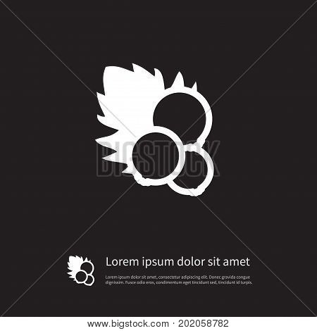 Currant Vector Element Can Be Used For Currant, Redcurrant, Red Design Concept.  Isolated Redcurrant Icon.