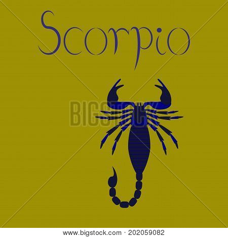 flat illustration on stylish background animal Scorpio