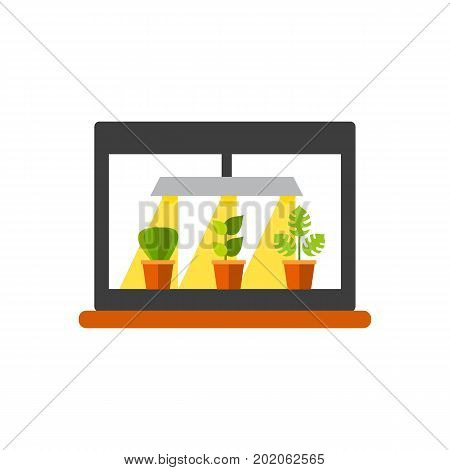 Vector icon of lamp illuminating houseplants. Lighting, fluorescent lamp, greenhouse. House plants concept. Can be used for topics like horticulture, plants, gardening