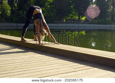 Young attractive woman doing yoga exercises in the park. Artha mukha svanasana