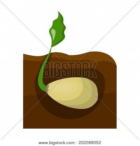 Root, single icon in cartoon style .Root vector symbol stock illustration .