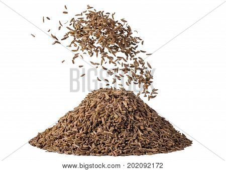 heap of caraway seed meridian fennel in motion isolated on white background