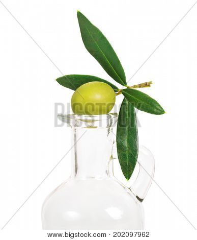 Olive branch with green olives on a bottle for olive oil. Isolated on white background