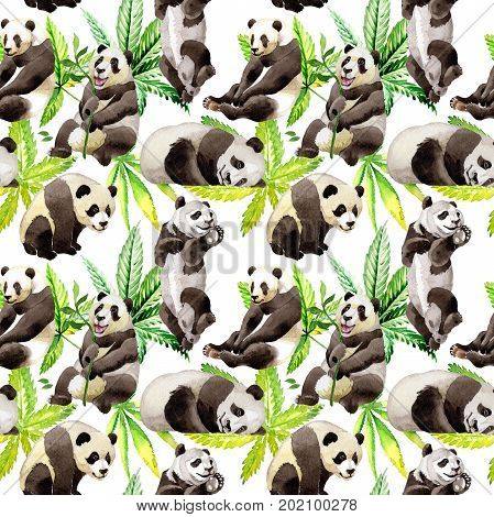 Panda wild animal pattern in a watercolor style. Full name of the animal: panda. Aquarelle wild animal for background, texture, wrapper pattern or tattoo.