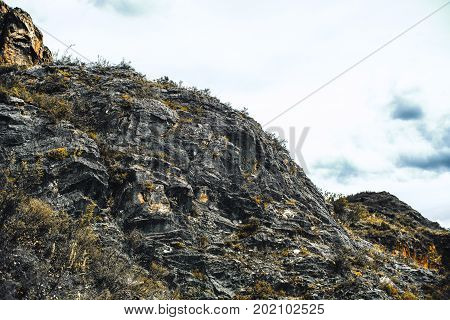 View from bottom of rocky flank of hill with multiple partly dry bushes on it on overcast summer day Altai mountains Russia