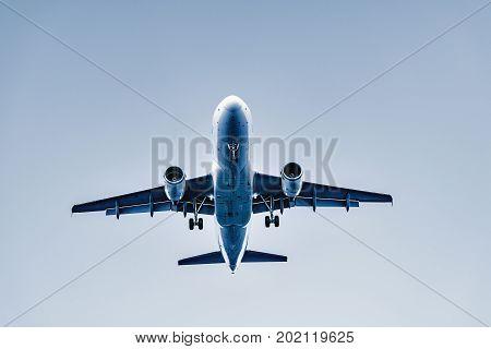 Flight of the passenger plane at sunset time.