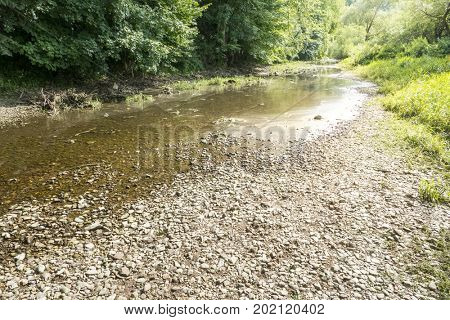An image of the Danube seepage at Donaueschingen Germany