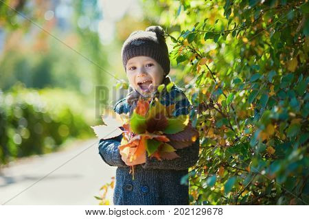 happy child boyl throws autumn leaves and laughs outdoors