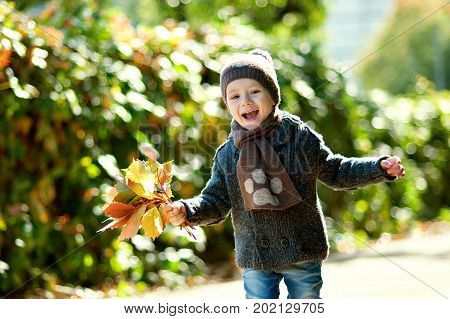 Kid play in autumn park. Children throwing yellow and red leaves. Little kid with oak and maple leaf. Fall foliage. Family outdoor fun in autumn. Toddler kid or preschooler child in fall