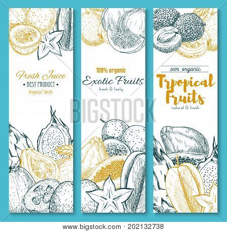 Exotic tropical fruits sketch banners set for juice. Vector organic rambutan, papaya or mango and orange pomelo, mangosteen or durian and feijoa, natural dragon fruit, maracuya passion fruit and guava