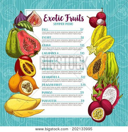 Exotic tropical fruits summer menu. Vector price template of figs, lychee or guava and carambola starfruit, tamarillo or papaya and granadilla, dragon fruit or mango and maracuja for fruit market