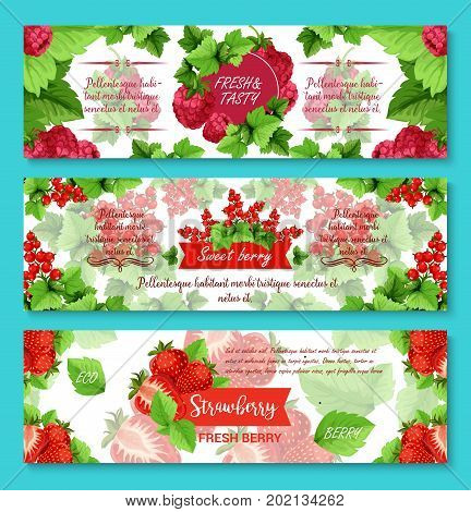 Berries banners for fruit or berry shop. Vector set of strawberry, raspberry or blueberry and blackberry, forest cranberry or garden cherry and organic red currant and blackcurrant berries