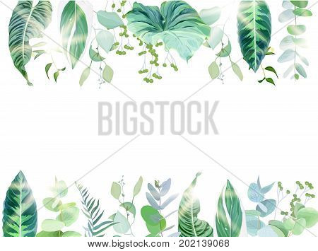 Exotic tropical border frame arranged from plants and palms. Green and emerald leaves, berry vector design set. Golden sun flares and luminous light. All elements are isolated and editable