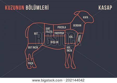 Meat cuts. Poster Butcher diagram and scheme - Lamb. Typographic with the names of parts of meat in Turkish. Graphic design for butcher shop, restaurant poster, banner and web. Vector Illustration