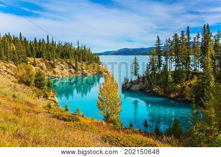 Warm sunny day in autumn, Indian summer in Canada. Abraham Lake is the most beautiful lake in the Rockies. Dense forests cover the lake shores. The concept of ecological and active tourism