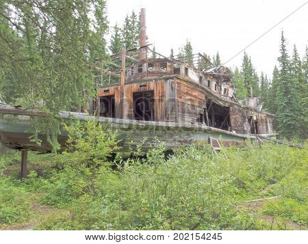 Steamboat sternwheeler wreck of Evelyn rotting in the wilderness of Shipyard Island next to historic Hootalinqua on Yukon River Yukon Territory Canada