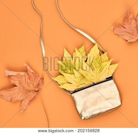 Autumn Minimal Design. Fall Fashion. Trendy Stylish Glamour fashion Gold Handbag Clutch. Yellow Fall Leaves. Vanilla Pastel colors.