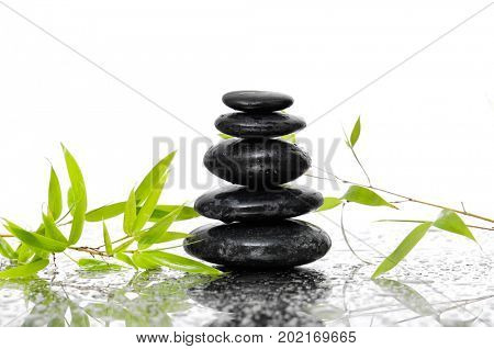 stacked black stones and bamboo leaves on wet background