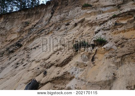 A Section Of Sandy Beach After A Landslide - Different Layers Of Earth And Sand, Traces Of Creeks In