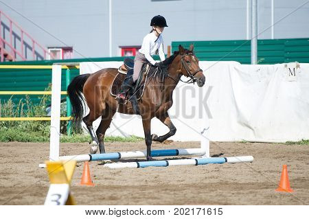 MOSCOW, RUSSIA - 27th August 2017: A unknown rider on horse in a show jumping event at a show Summer Cup 2017 among amateur athletes. at Leninskie Gorki, Moscow, RUSSIA