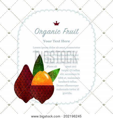 Colorful Watercolor Texture Nature Organic Fruit Memo Frame Salak