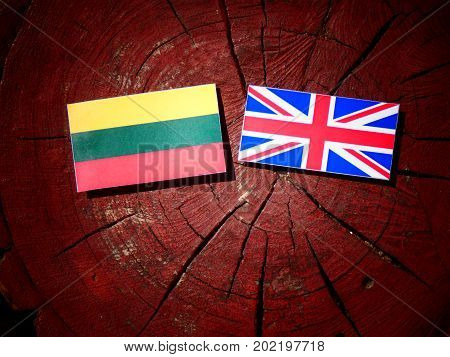 Lithuanian Flag With British Flag On A Tree Stump Isolated