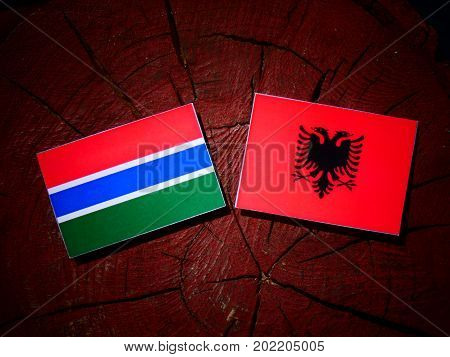 Gambia Flag With Albanian Flag On A Tree Stump Isolated