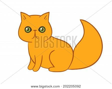 Sitting funny surprised fluffy red persian cat cartoon character starring at a viewer. What? face expression kitty. Scared & anxious & astonished goggle-eyed orange domestic pet kitten. Fluffy friend.