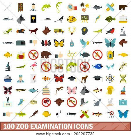 100 zoo examination icons set in flat style for any design vector illustration