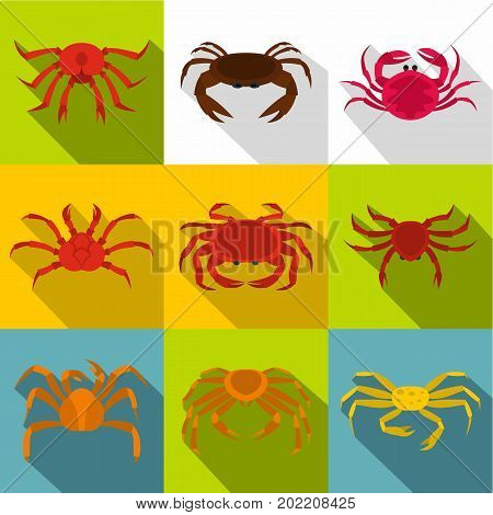 Seafood crab icon set. Flat style set of 9 seafood crab vector icons for web design