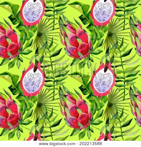 Tropical Hawaii leaves palm tree and pitaya pattern in a watercolor style. Aquarelle wild flower for background, texture, wrapper pattern, frame or border.