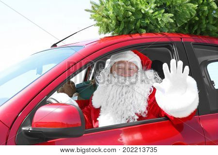 Authentic Santa Claus driving car with Christmas tree on top