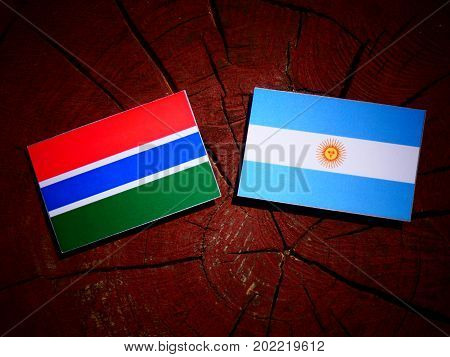 Gambia Flag With Argentinian Flag On A Tree Stump Isolated