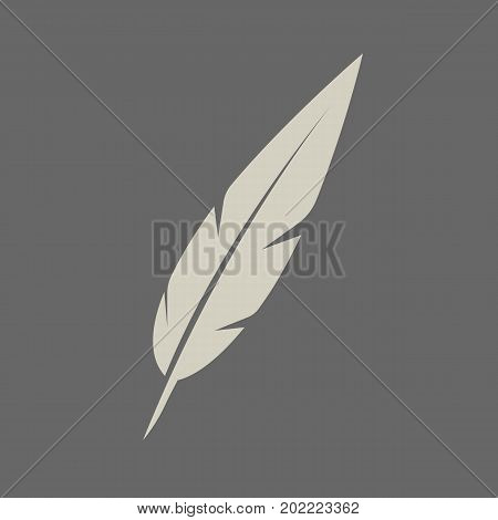 Feather isolated on background. Feather icon. Vector stock.