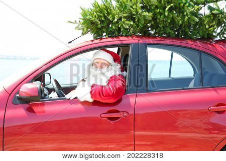 Authentic Santa Claus driving car with Christmas tree on it's top