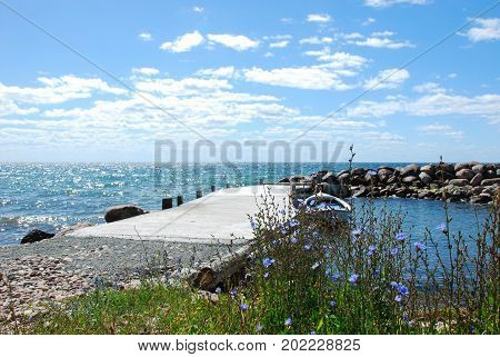 Old pier with blossom chicory flowers by the coast