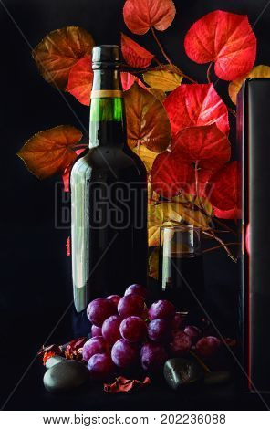 Autumnal atmosphere. Season of the year of grape harvest to elaborate the wine.